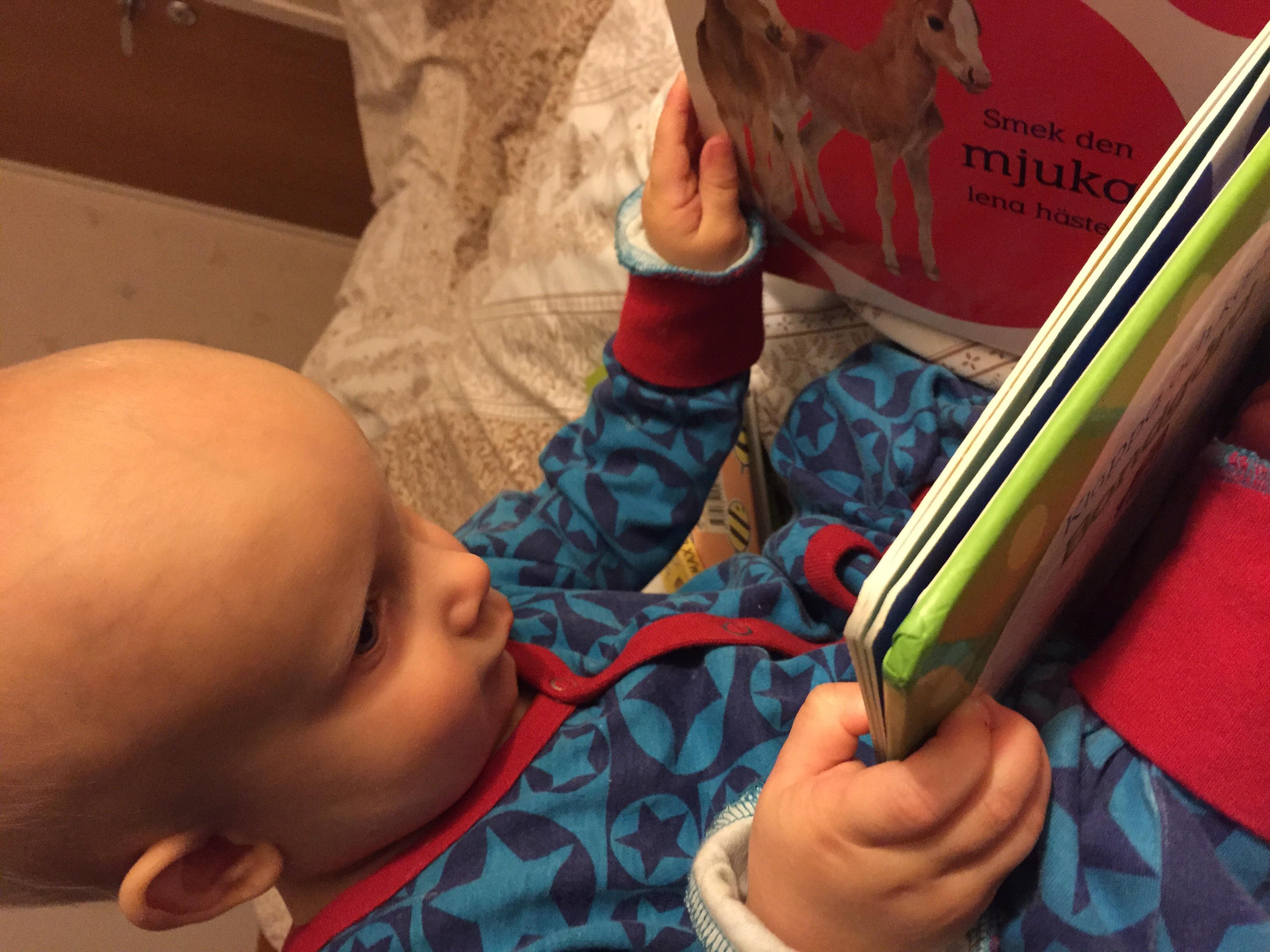 Albin läser bok